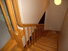 フォレストヴィラ 階段があります