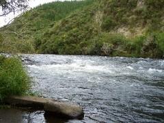 ラフティングした川