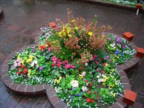 花いっぱいの花壇